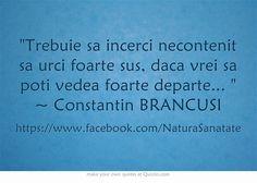Trebuie sa incerci necontenit sa urci foarte sus, daca vrei sa poti vedea foarte departe...  ~ Constantin BRANCUSI
