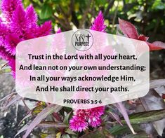 Proverbs 3:5-6 Psalm 62, Proverbs 3 5 6, Share My Life, Program Design, My Passion, Natural Health, Bible Verses, Purpose, Healthy Living