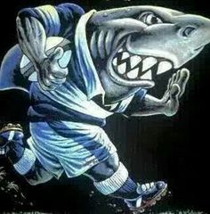 Rugby Images, Shark Pictures, Team Building, Sharks, Joker, Jaco, Food Court, Fictional Characters, Shark