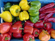 Ile kalorii ma papryka - http://www.dietatop.pl/ile-kalorii-ma-papryka/