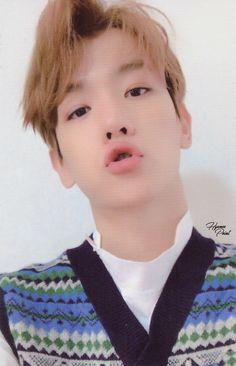♡ exo baekhyun :: my BOBOhu ! universe photocard ☆彡