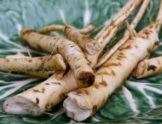 Horseradish is a powerful keeper of human health, especially in winter days. It is a natural antibiotic, useful for improving circulation, and it's a good protector of the heart and the entire … Health Remedies, Home Remedies, Natural Remedies, Natural Treatments, Natural Spice, Speed Up Metabolism, Natural Antibiotics, Improve Circulation, Alternative Medicine