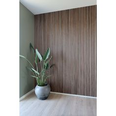 Schlafzimmer Acupanel Natural Walnut Acoustic Slat Wood Panels for Wall & Ceiling Down Lighting Wood Slat Wall, Wood Panel Walls, Wood Slats, Wood Paneling, Panelling, Wood Panel Bathroom, Wood Wall Decor, Acoustic Wall Panels, Decorative Wall Panels