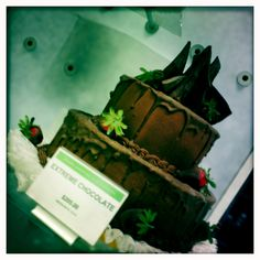 To the Extreme.  #publix #florida #perdidokey #pensacola #cake #chocolate