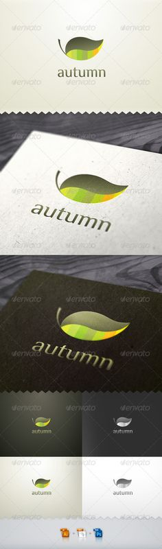 Autumn Leaf Nature Logo