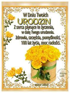 Happy Birthday, Motto, Photography, Decor, Birthday, Flowers, Happy Brithday, Photograph, Decoration