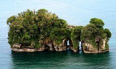 Bird Island / Isla Pajaros - Bocas del Toro, Panama