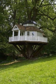 I didn't know you could make something like this, especially in a tree....