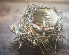Nest Nature Natural Decor Love Family John Keats Inspirational Quote Feathers Woodland Art Twigs Neutral, Fine Art Print on Etsy, $30.00