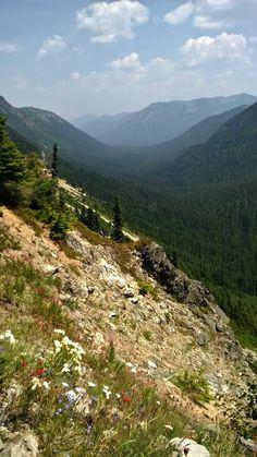 Chinook Pass from Sheep Lake Trail, WA