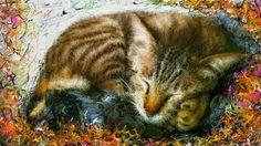 PCペイントで絵を描きました! Art picture by Seizi.N:   寒い冬には猫は知ってますね暖かい場所を、外に止めてある僕の原付バイクのシートの上が暖かいらしく、足跡が残ってます、そんな昼寝している猫ちゃんの絵をお絵描きしてみました。  Keroppi from The Piano Tambo, ケロッピ The Piano Tambo より http://youtu.be/tEnqx36lmqg