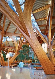 Interior of Peel Regional Cancer Centre (Credit Valley Hospital) designed by Farrow Partnership. Healthcare Architecture, Timber Architecture, Healthcare Design, Organic Architecture, Beautiful Architecture, Architecture Details, Rotterdam Architecture, Tree Structure, Timber Structure