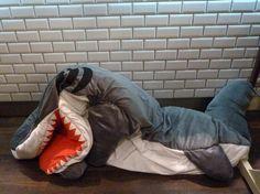 Kids Shark sleeping bag, great fun and comfy too, at Selfridges Holiday 2012
