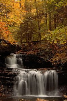Ricketts Falls on Kitchen Creek in Ricketts Glen State Park, Fairmount Township, Luzerne County, Pennsylvania Beautiful World, Beautiful Places, Beautiful Pictures, Beautiful Waterfalls, Beautiful Landscapes, Landscape Photography, Nature Photography, Scenic Photography, Night Photography