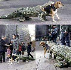 disfraz de perro-cocodrilo
