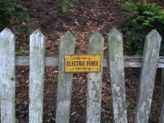 21 Signs that seem legit... Technically, wood CAN conduct electricity.