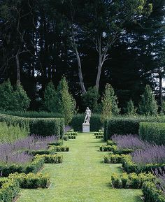 box walk Boxwood (Buxus Sempervirens) and English Lavender (Lavandula Angustifolia).Boxwood (Buxus Sempervirens) and English Lavender (Lavandula Angustifolia). Garden Shrubs, Garden Paths, Garden Art, Garden Landscaping, Shade Garden, Garden Trees, Formal Gardens, Outdoor Gardens, Beautiful Landscapes