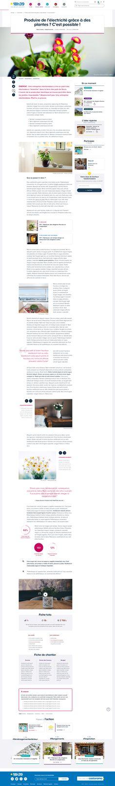 Single article - 18h39 / Castorama