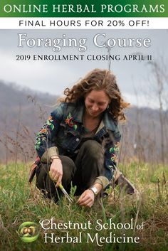 *Last Call! Enrollment in our >> ONLINE FORAGING COURSE << closes soon!   Take *20% off* your tuition through April 11th!!  Join us for a wild food + medicine adventure in plant paradise!  The course features:  🌼 Beautiful and engaging video instruction (over 50 videos!)  🌿 A gorgeous 600-page printable course manual  🌼 Wild food + herbal recipes galore  🌿 Access to a team of experienced herbalists and foragers  🌼 Experiential projects + optional reviews and quizzes  🌿 And so much more!