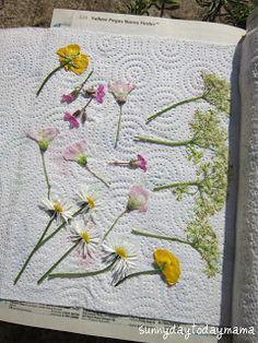 Pressed flowers for a botany study. Plant activity. Art activity using flowers. #homeschool, nature study idea http://sunnydaytodaymama.blogspot.co.uk/2012/06/making-pressed-flower-keyrings.html