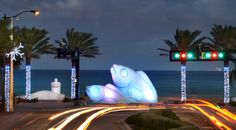Giant fish sculpture on Fort Lauderdale beach at Las Olas Blvd made of recycled plastic bottles. Florida Living, South Florida, Carnival Freedom, Giant Fish, Beach Lighting, Fort Lauderdale Beach, Fish Sculpture, Florida Travel, Holiday Lights