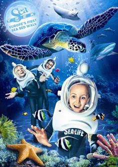 images about Sea TREK? Locations ? Helmet Diving on Pinterest Sea ...