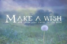 Wish Quotes Inspirational Wish Quotes Photo Art Dandelion  Quote Love .