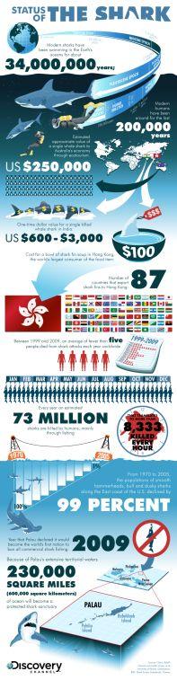 Shark Conservation Infographic - Shark threats