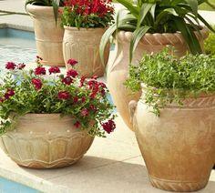 Umbria Planters | Pottery Barn