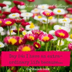 Dare to Declare 30 day Challenge Day 24: I have an extraordinary life because.... It's a 30 day challenge to declare what we love & enjoy about ourselves, our lives and the world. Complete the phrase in the comments below - so we can celebrate together.
