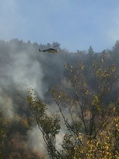 Woodstock fire chief assessing forest fire from helicopter