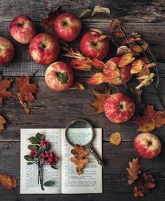 | October| Orchard Apples, Botany & Leaf Collections