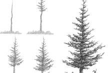 How to Draw Realistic Trees, Plants Bushes and Rocks - Google Search