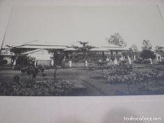 Fotografía antigua: Guinea Ecuatorial, Fernando Poo y Camerún alemán en 1910, con general Barrera, lote 6 fotos - Foto 6 - 93043310