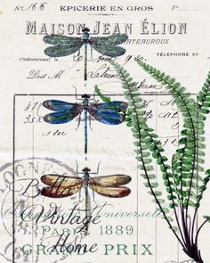 Botanical Blue Dragonflies and Fern Print, Pillow, Note Cards Original artwork created from vintage bookplates, etchings & papers. Printed in the USA on handcrafted paper Vintage Labels, Vintage Ephemera, Vintage Cards, Vintage Paper, Vintage Images, Vintage Bee, Botanical Illustration, Botanical Prints, Blue Dragonfly