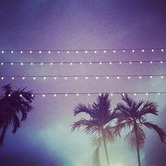 Miami nights on lveland.com #lveland