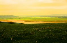 Wales-LLansaint's landscape