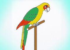 How to draw parrot What materials you need to complete this drawing: sketchbook or just any white piece of paper, pencil, eraser For coloring you may use any other desirable materials of your own choice: Coloring pencils, markers, crayons or paints. You can even mix different materials in your drawing, it can give your artwork …
