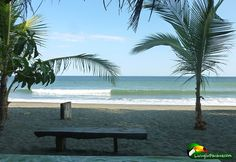 Discover Puerto Armuelles, Panama - Check out These Photos Puerto Armuelles, Ocean Waves, More Photos, Palm Trees, Panama, Stool, Watch, Places, Check