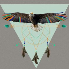 The indian eagle is watching over Po's dreamcatcher by AmDuf