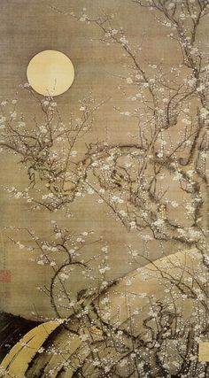 White Plum Blossoms in Moonlight. Ito Jakuchu. Unknown year.