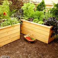 Build a raised planting bed and have tonight's salad at your fingertips! This attractive cedar design uses perforated drain pipe to store and distribute the water. Get the full plans for this raised-bed planter here.