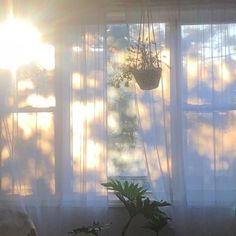 this past week and a half or so has been heavy. everywhere i look i feel reminded of the weight of not feeling fully seen or appreciated or… Morning Light, White Aesthetic, Light And Shadow, Aesthetic Pictures, Room Inspiration, Windows, Lights, Pure Products, Decoration