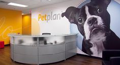 Petplan on Behance