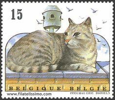 cat postage stamp