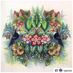 Magnífico! #Repost @rpenze with @repostapp livro Magical Jungle de @johannabasford #magicaljungle # - desenhoscolorir