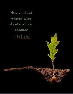 ~quote from 'The Lorax'. I love 'the Lorax' and what this story represents & stands for.