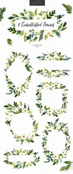 Watercolor White Flower Clip Art by Graphic Box on 31 Flower elements 8 Flower wreathes 14 Flowers bouquets 6 Watercolor frames 2 Big flower header drop [ad] Big Flowers, Amazing Flowers, White Flowers, Draw Flowers, Flower Frame, Flower Art, Watercolor Flowers, Watercolor Paintings, Watercolor Design