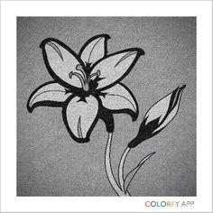 Entre blanco y negro... hay cientos de tonalidades grises.