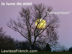 la lune de miel - honeymoon #frenchexpression #learnfrench #fle  Read the lesson and examples and listen to the pronunciation on the #lawlessfrench site (link in bio)